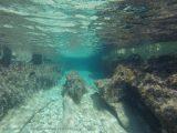 Split Sailing-DIV-Komiža Crystal Blue Passage
