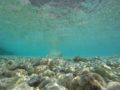 Split Sailing-DIV-Komiža Hidden Beach Stone