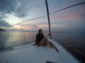 One-day-sailing-Sea-sunset-SPLITSAILING-NET