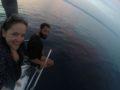 One-day-sailing-Sea-sunset2-SPLITSAILING-NET