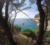 split-sailing-net-Bisevo-bay-pan