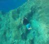 split-sailing-net-Aquarius-sailing-Bisevo-W-cave-10