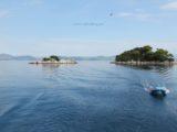 split sailing net – Aquarius sailing Mljet anchor leaving
