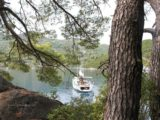 split sailing net – Aquarius sailing Mljet anchor morning 1