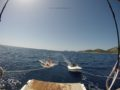 split-sailing-net-sailing-to-Lastovo-1.jpg