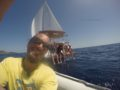 split-sailing-net-sailing-to-Lastovo-buterfly-2.jpg